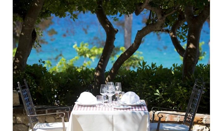 Villa & Gourmet restaurant Barbat